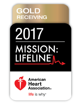2017 Mission Lifeline Logo